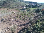 Foto Venta de terreno en Benajarafe